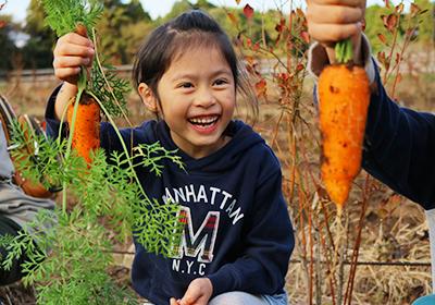 冬野菜収穫&ごろごろ野菜のあったかパイシチュー!
