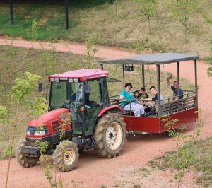 トラクターツアー